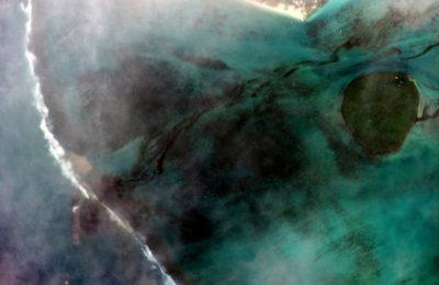 Viaţa marină din jurul insulei Mauritius, în pericol: Voluntarii au găsit anghile şi stele de mare moarte